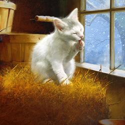 Пазл онлайн: Белый котик у окошка