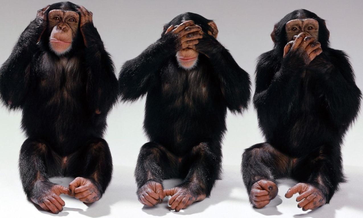 Дню учителя, картинка с тремя обезьянами