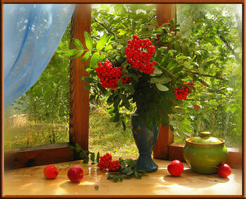 натюрморт на окне: