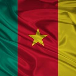 Пазл онлайн: Флаг Камеруна