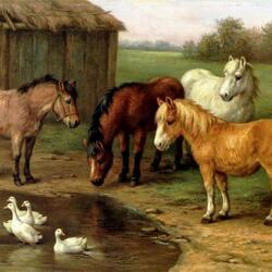 Пазл онлайн: Лошадки пони