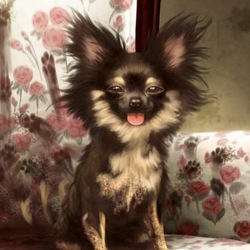Пазл онлайн: Маленькая собачка