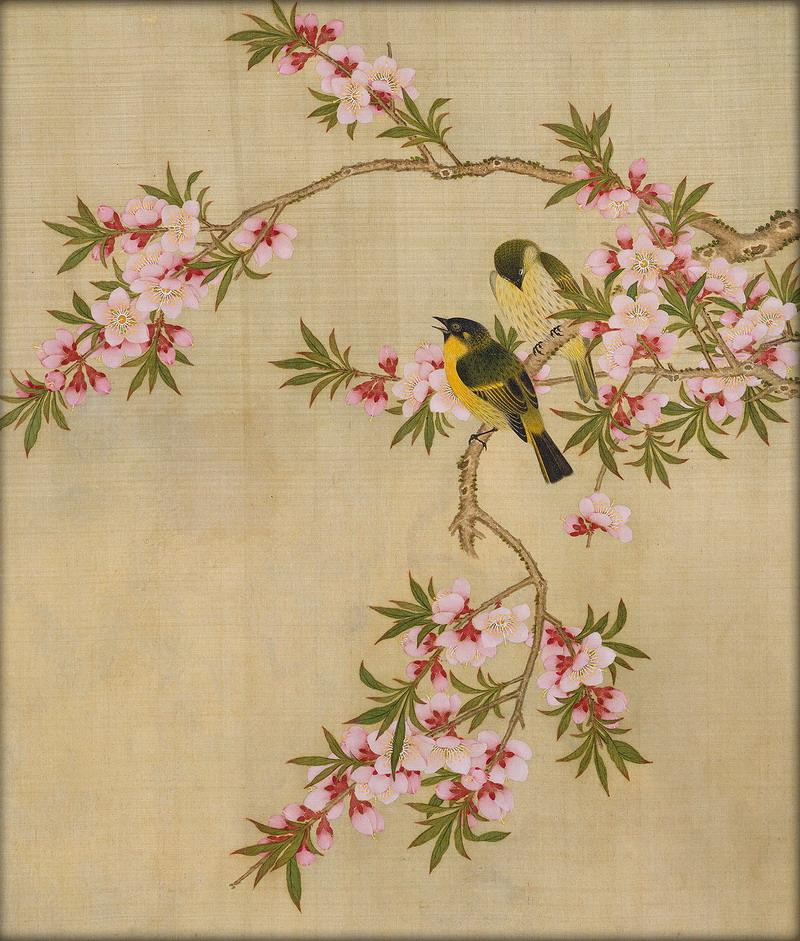 японские китайские птицы картинки после этого