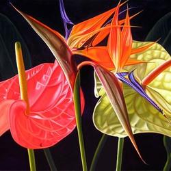 Пазл онлайн: Цветы Венесуэлы