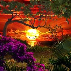 Пазл онлайн: Красочный закат