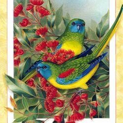 Пазл онлайн: Лазурный травяной попугайчик
