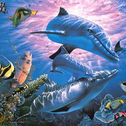 Пазл онлайн: Семья дельфинов