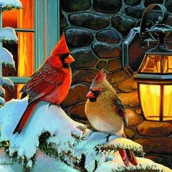 Пазл онлайн: Красные кардиналы