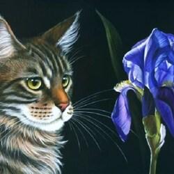 Пазл онлайн: Кот и цветок ириса
