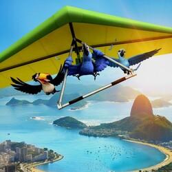 Пазл онлайн: Полет Рио