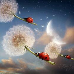 Пазл онлайн: Полёт божьих коровок