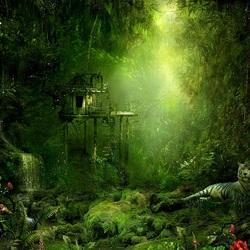 Пазл онлайн: Сказочные джунгли