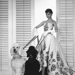 Пазл онлайн: Ушедшая эпоха Голливуда.Одри Хепберн