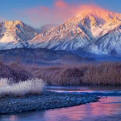 Пазл онлайн: Зимняя свежесть