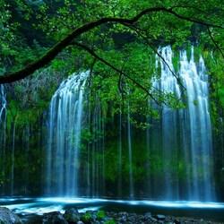 Пазл онлайн: Mossbrae Falls, Северная Калифорния