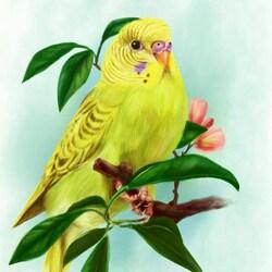 Пазл онлайн: Желтый попугай