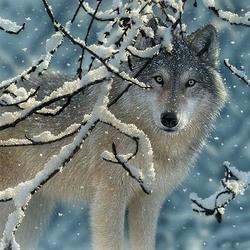 Пазл онлайн: Волчонок