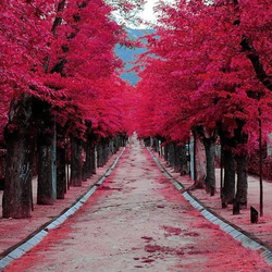 Пазл онлайн: Аллея влюбленных, ''Сад дьявола'', Испания