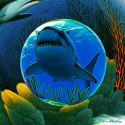 Пазл онлайн: Акула
