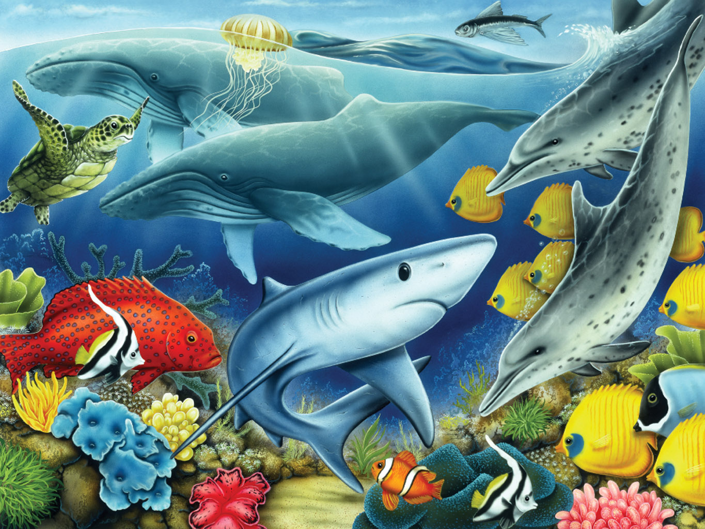Картинки с морскими животными для детей