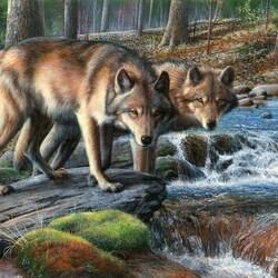 Пазл онлайн: Волки на реке