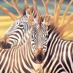 Пазл онлайн: Две зебры
