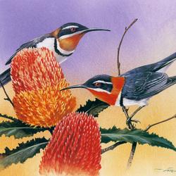 Пазл онлайн: В поисках нектара