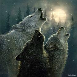 Пазл онлайн: Песня волков