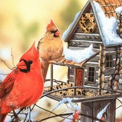 Пазл онлайн: Красный кардинал