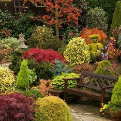 Пазл онлайн: Скамейка в осеннем саду