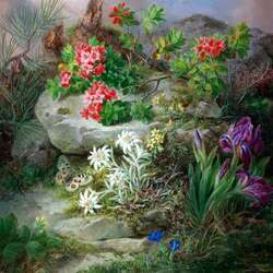 Пазл онлайн: Цветы на камне