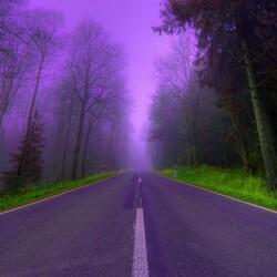 Пазл онлайн: Сиреневый туман