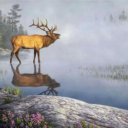 Пазл онлайн: Трубный рев оленя