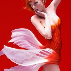 Пазл онлайн: Красная рыбка
