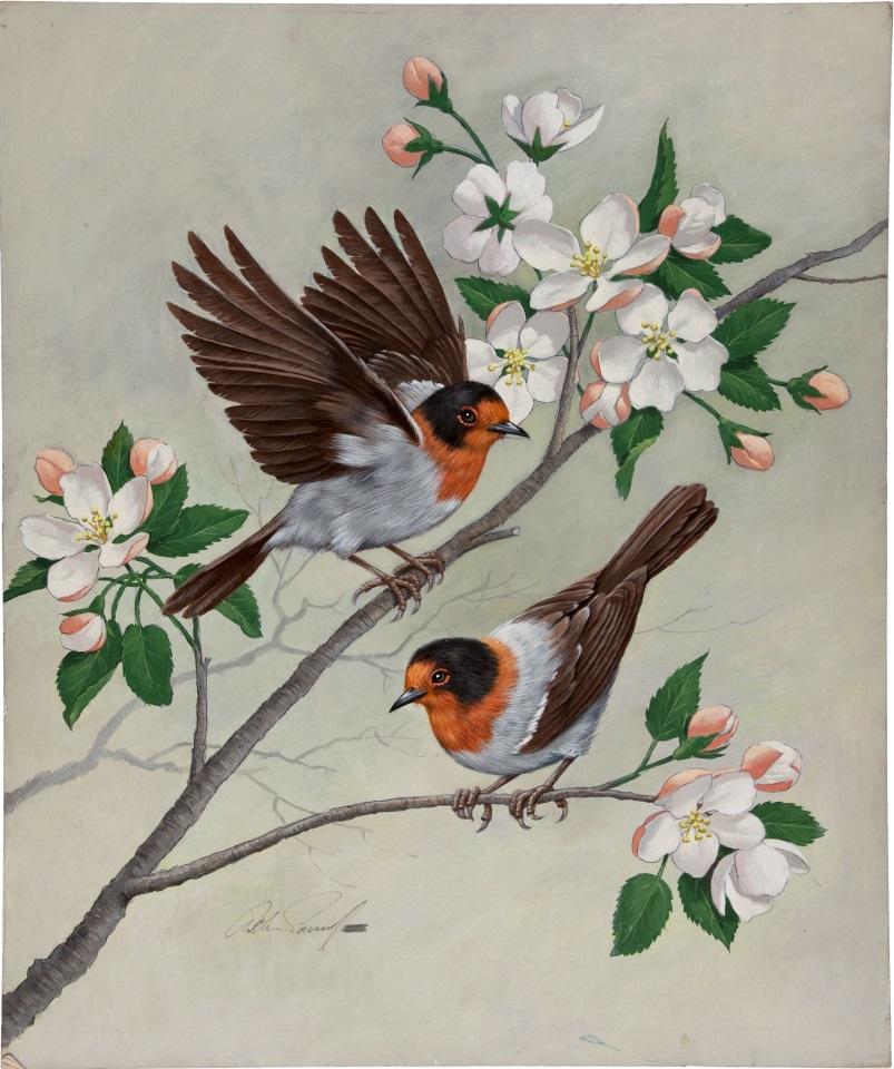 Картинки, картинки для детей птичка на ветке