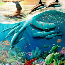 Пазл онлайн: Морская жизнь