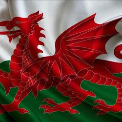 Пазл онлайн: Флаг Уэльса