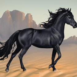 Пазл онлайн: Король пустыни
