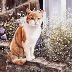 Пазл онлайн: Кот на заборе