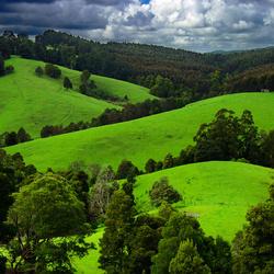 Пазл онлайн: Зеленые просторы