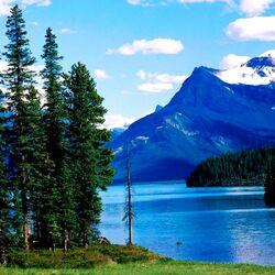 Пазл онлайн: Гармония природы