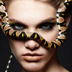 Пазл онлайн: Фотосет со змеями