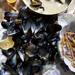 Пазл онлайн: Моллюски