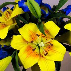 Пазл онлайн: Цветочная композиция лилии с ирисами