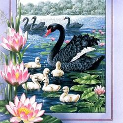 Пазл онлайн: Черный Лебедь