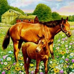 Пазл онлайн: Лошади на лугу