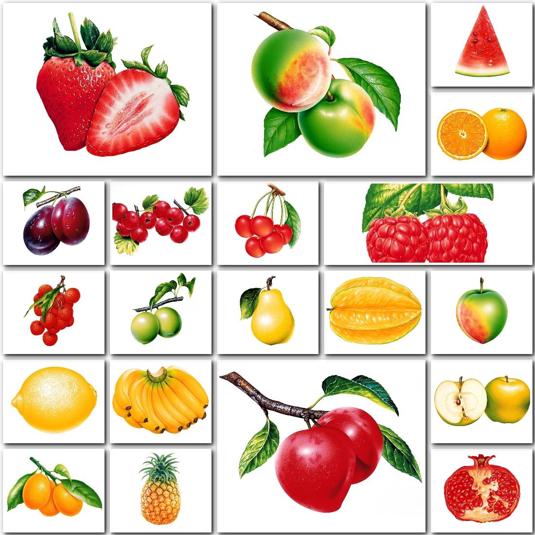 Маркировка в детском саду картинки фрукты и овощи
