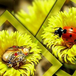 Пазл онлайн: Драгоценный жук