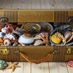 Пазл онлайн: Старый чемодан и дары моря