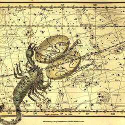 Пазл онлайн: Уранография - Скорпион, Весы